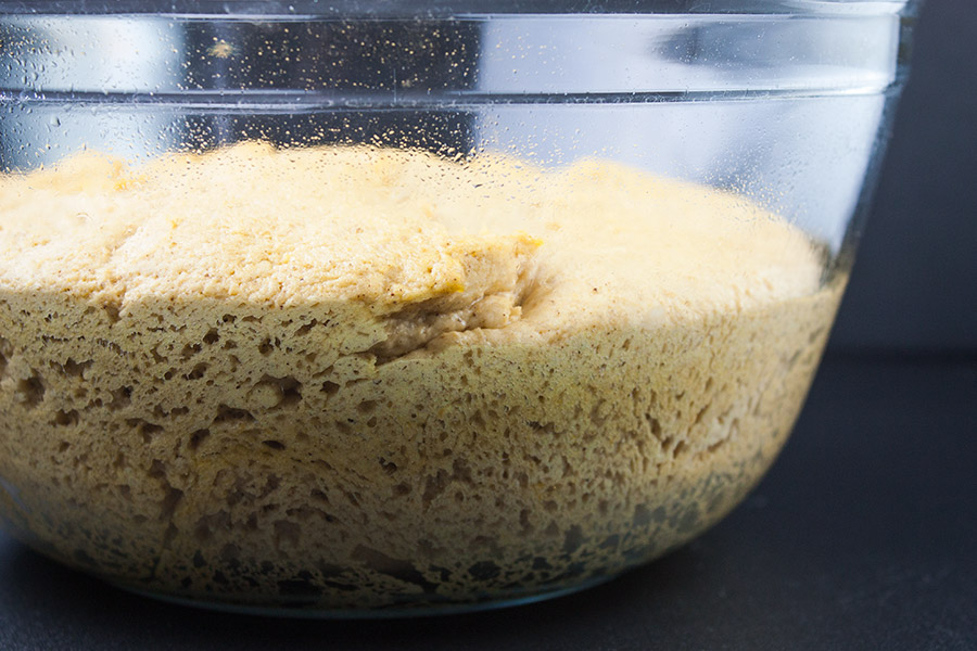 bread dough in a greased clear mixing bowl