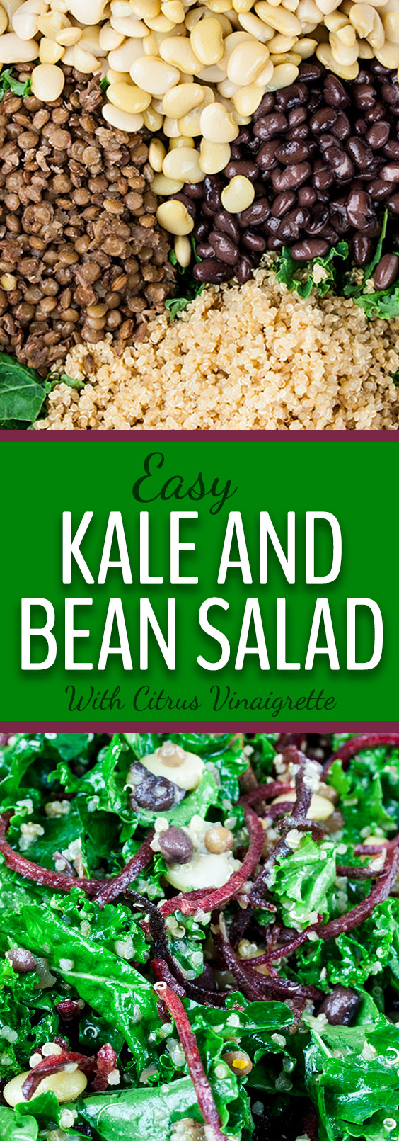 Kale and Bean Salad - An easy nutrient-rich kale and bean salad dressed with a tangy citrus vinaigrette. My version of the Long Life salad.